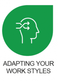 Adapting Your Work Styles