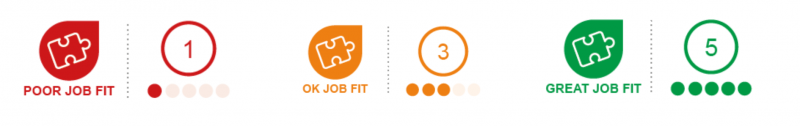 Detailed Job Fit Profile